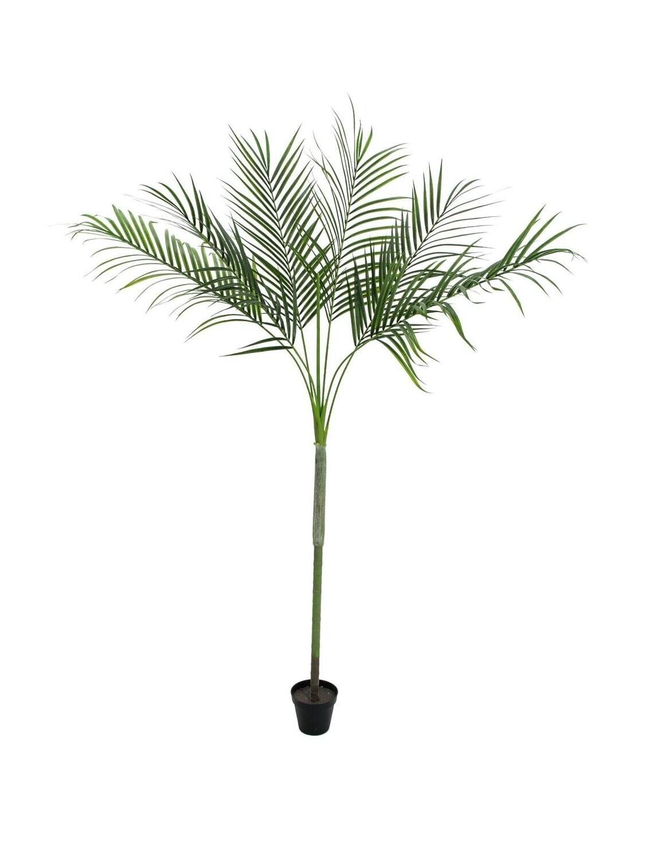 Tekokasvi Areca-palmu 180cm