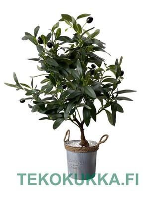 Oliivi tekokasvi pöydälle - 50cm