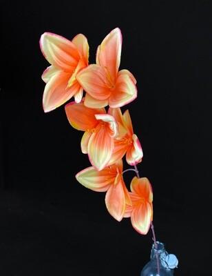 Oranssi orkidea tekokukka