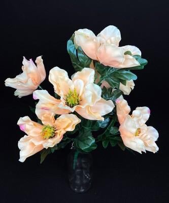 Magnoliakimppu, persikka