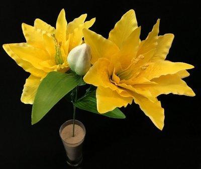 Lilja, keltainen