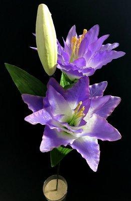 Lilja, laventeli