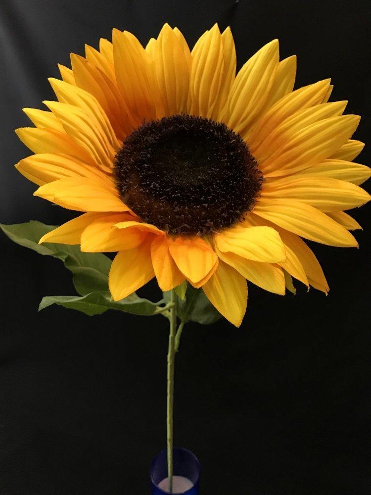 Auringonkukka silkkikukka
