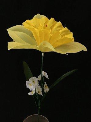 Narsissi, keltainen