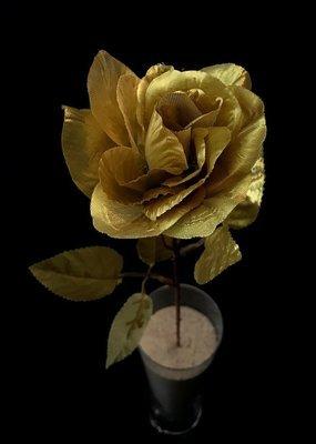 Ruusu, kulta