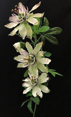 Passionflower, vihreä