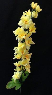 Ritarinkannus, vaalea keltainen