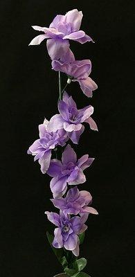 Ritarinkannus, laventeli