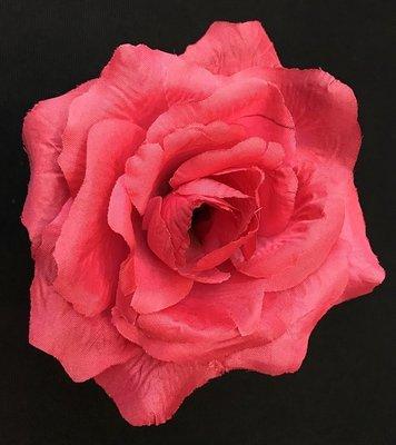 Pensasruusu-kukkapää, tumma pinkki