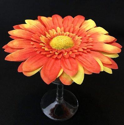 Gerbera-kukkapää, oranssi