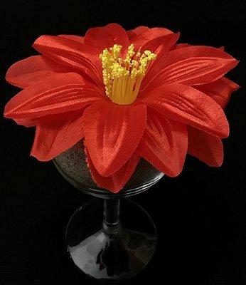 Daalia-kukkapää, punainen
