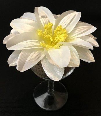 Daalia-kukkapää, valkoinen