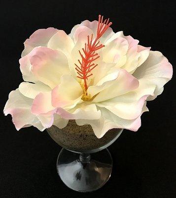 Hibiskus-kukkapää, kerma/vaaleanpunainen
