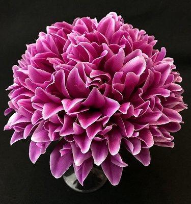 Krysanteemi-kukkapää, tumma lila