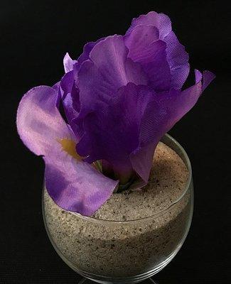 Iiris-kukkapää, laventeli