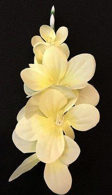 Freesia-kukkapää, vaaleankeltainen