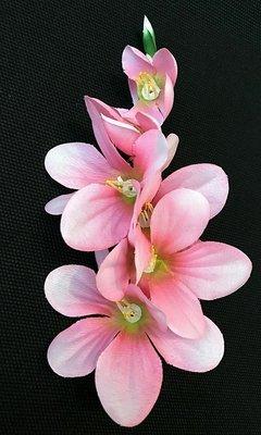Freesia-kukkapää, vaaleanpunainen