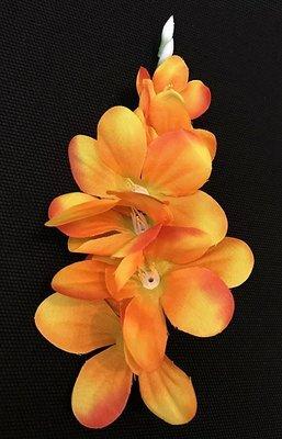 Freesia-kukkapää, oranssi