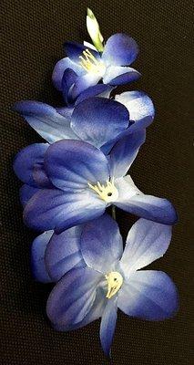 Freesia-kukkapää, sininen