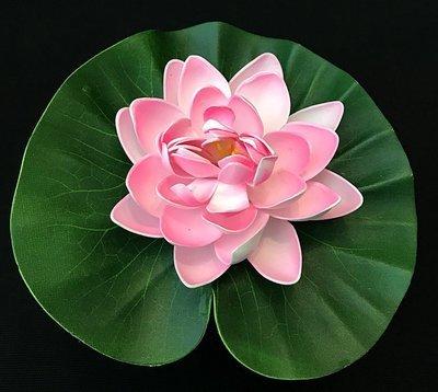 Lumpeenkukka-kukkapää, vaaleanpunainen