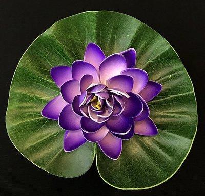 Lumpeenkukka-kukkapää, violetti