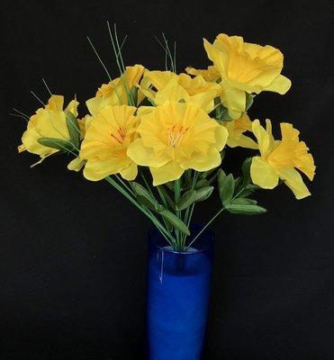 Narsissikimppu, keltainen