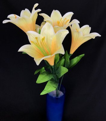 Liljakimppu, vaalea keltainen