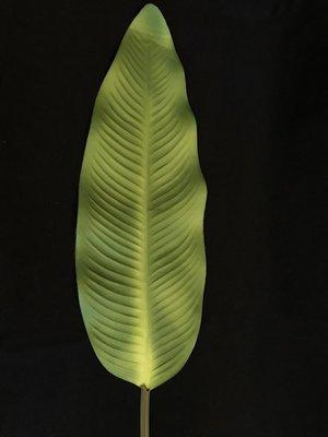 ISO banaanin tekolehti, vihreä