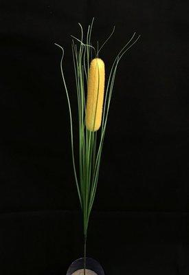 Osmankäämi ISO, keltainen