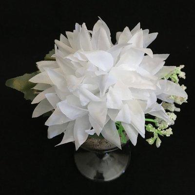 Daalia-kukkapää lehdillä, valkoinen