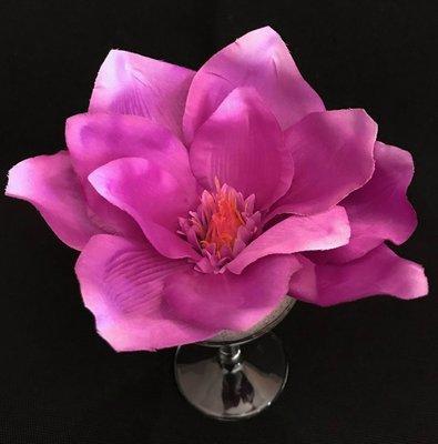 Magnolia-kukkapää, violetti