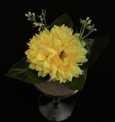 Asteri-kukkapää lehdillä, keltainen