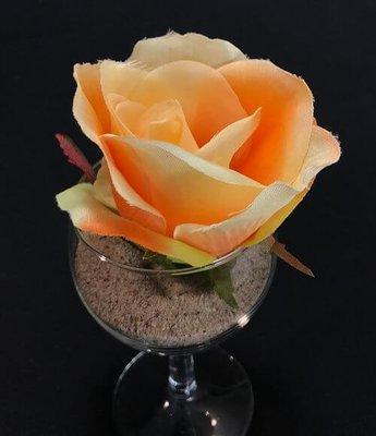 Ruusu-kukkapää, aprikoosin värinen