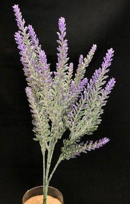 Kanerva / calluna tekokasvi, violetit kukat