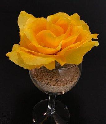Pensasruusu-kukkapää, keltaoranssi