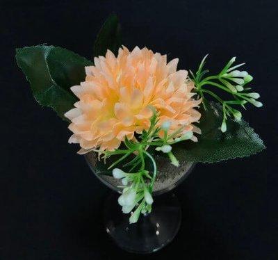Asteri-kukkapää lehdillä, vaalea persikka