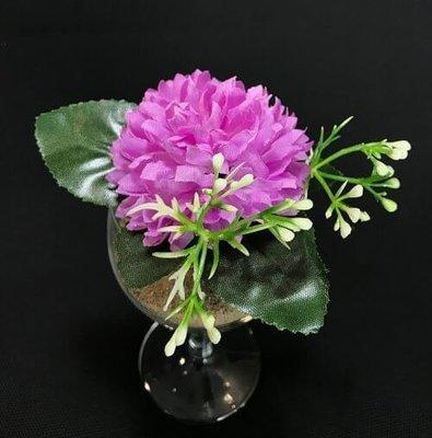 Asteri-kukkapää lehdillä, violetti