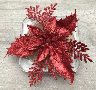 Kimaltava kukkapää, punainen