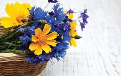 Pieni kortti: kauniit kukat