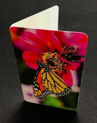 Pieni kortti: kaunis perhonen