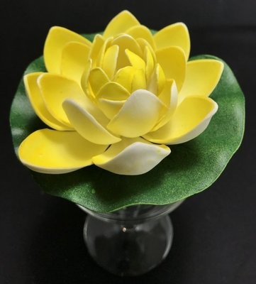 Pieni lumpeenkukka-kukkapää, keltainen
