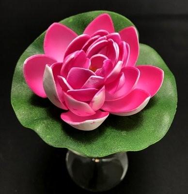 Pieni lumpeenkukka-kukkapää, pinkki