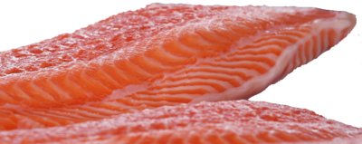 Fresh Scottish Salmon Fillets