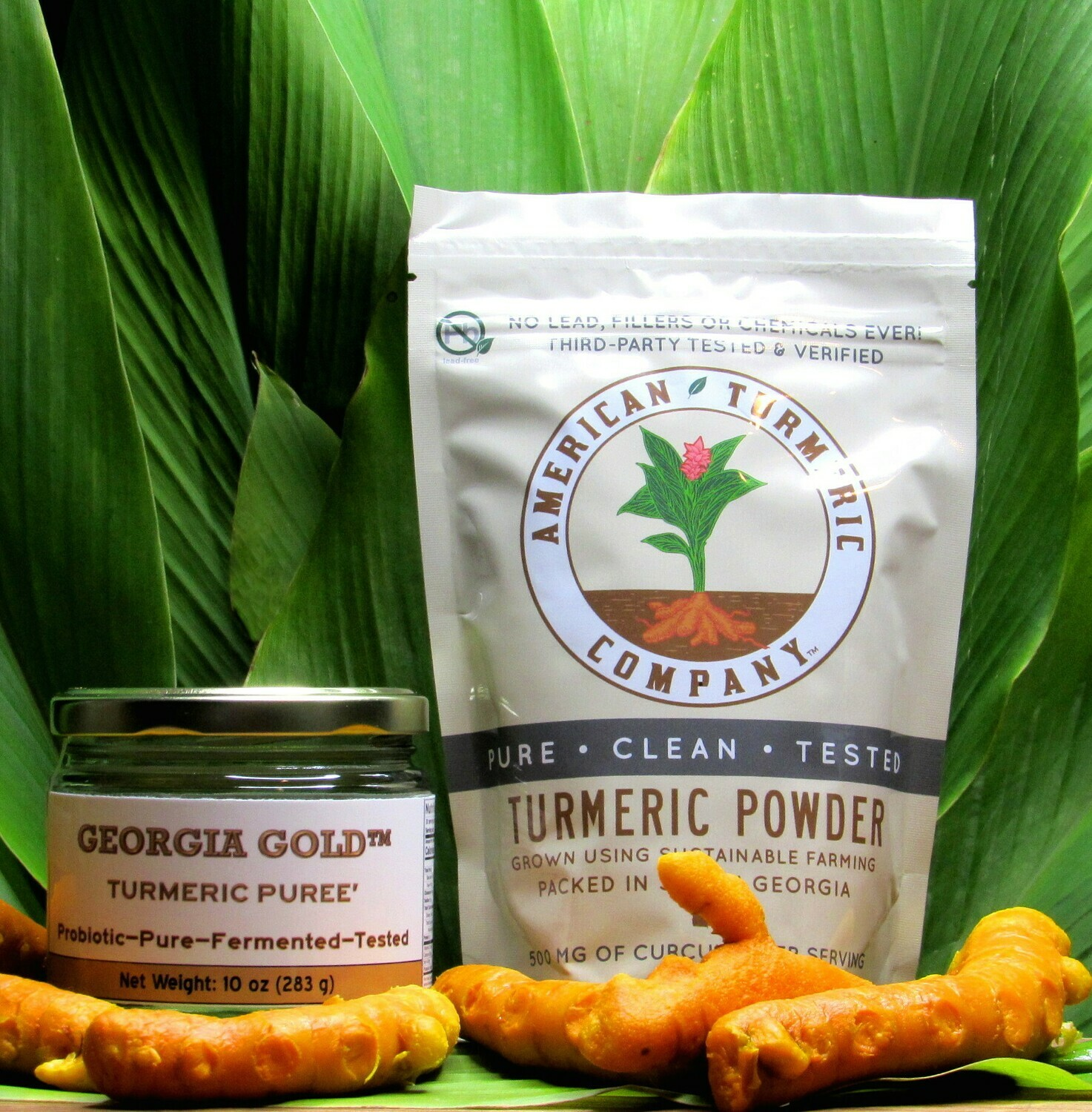 COMBO SPECIAL - Georgia Gold Turmeric Puree and Turmeric Powder - Now With Discounts - SAVE BIG