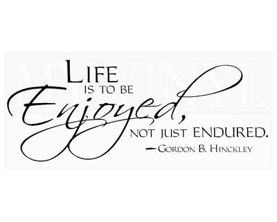 CL016 Life is to be enjoyed, not just endured.
