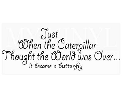 IN028 Just when the caterpillar thought the world was over