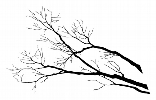 BC313 Large Tree Branch
