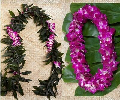GRADUATION LEI 2 PACK (MAILE STYLE)
