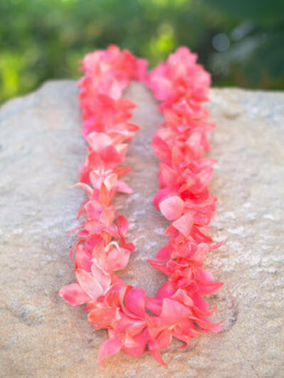 DYED PINK ON WHITE ORCHID LEI (SINGLE)