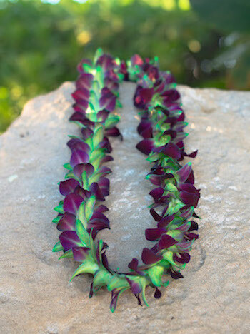 DYED GREEN ON PURPLE ORCHID LEI (SINGLE)